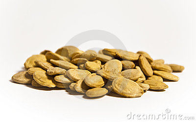 Egyptian Crack Seeds