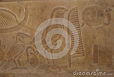 Egyptian bird hieroglyphics - photo#26