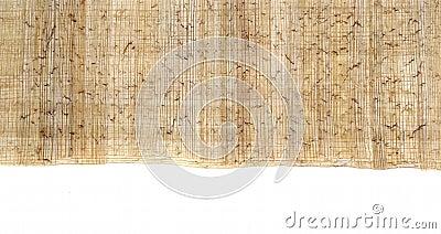 Egyptian papyrus 1
