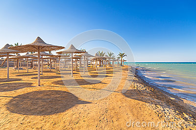 Egyptian parasols on the beach