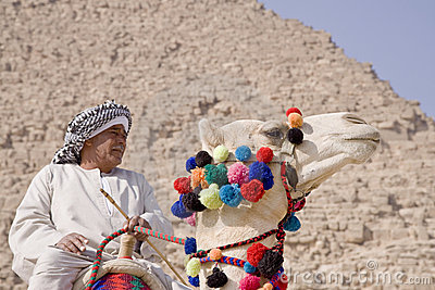 Egyptian sitting on a camel Editorial Stock Photo