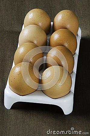 Eieren van kippen.