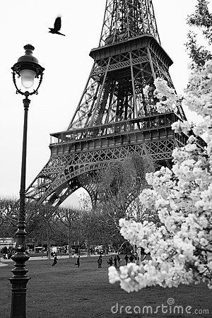 Eiffel Tower with spring park, Paris, France