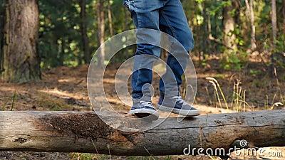 Ein glückliches kleines Kind geht auf einem Waldspaziergang, überwindet Hindernisse und entwickelt Mut und Beweglichkeit Zukunft  stock footage