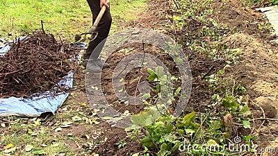 Ein männlicher Bauer arbeitet auf dem Land stock footage