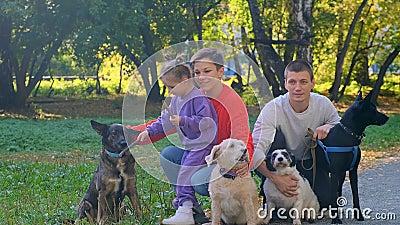 Eine junge Familie mit ihren Haustieren, vier Hunde stock footage