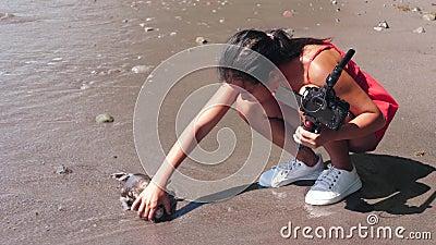 Eine weibliche Vloggerin fand einen toten Fisch an der Meeresküste, als sie Video filmte stock video