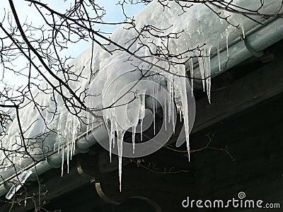 Eiszapfen, die vom Dach hängen