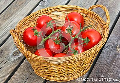 Ekologiczni pomidory