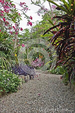 Ekologisk trädgård