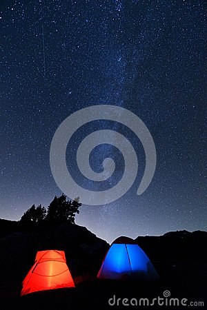 El acampar en mota amarilla del aster
