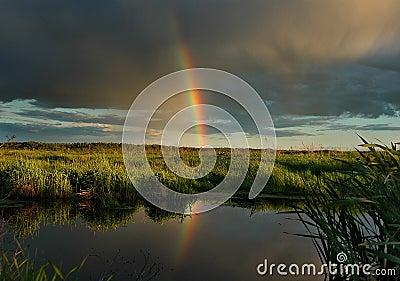 El arco iris de la tarde.