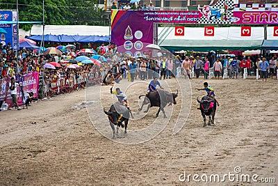 El competir con del búfalo del festival Foto editorial