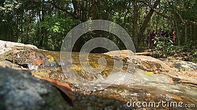 El flujo continuo de una cascada metrajes