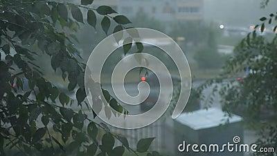 El flujo de coches en un día lluvioso almacen de video