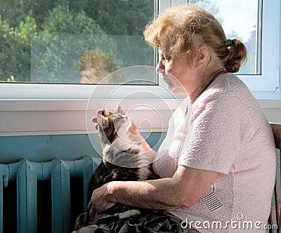 El gato de la caricia de la mujer mayor