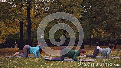 El grupo de estudiantes de la yoga de las mujeres jovenes está haciendo los ejercicios para la espina dorsal sana que se coloca e almacen de metraje de vídeo