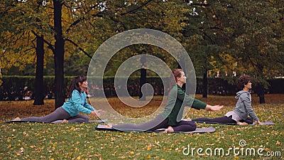 El grupo de señoras jovenes está haciendo la actitud practicante Eka Pada Rajakapotasana de rey Pigeon de la yoga en las esteras  almacen de metraje de vídeo
