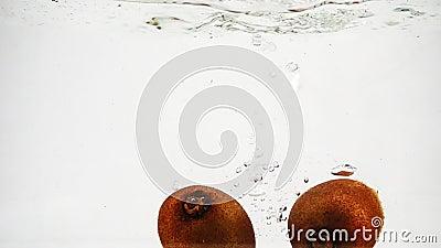 El kiwi se sumerge en un recipiente de agua con burbujas a cámara lenta. Kiwi aislado de fondo blanco almacen de metraje de vídeo