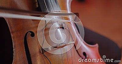 El m?sico toca el violoncelo almacen de video