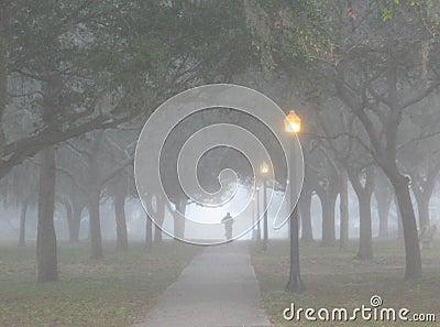 El montar en la niebla