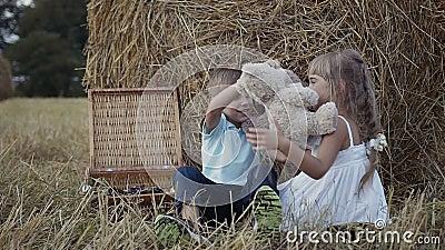 El muchacho y la muchacha están jugando osos suaves del juguete de la diversión Una muchacha en una alineada blanca Puesta del so almacen de video