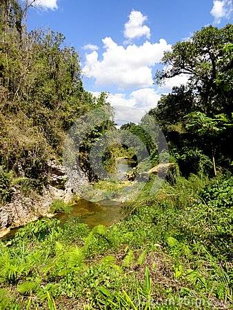 Free El Nicho Waterfalls Stock Images - 51253764