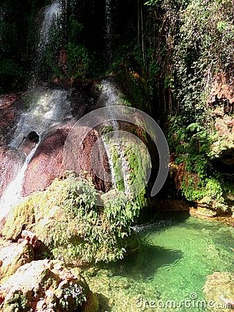 Free El Nicho Waterfalls Stock Photos - 51254933