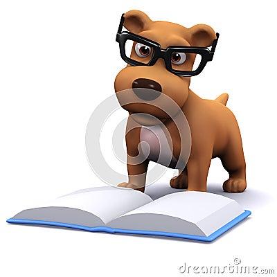 Porque lamen los perros? Conoce las 7 razones principales