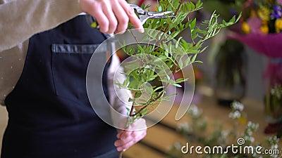 El ` s de la mujer da intentar cortar un espray del ramo color de rosa almacen de metraje de vídeo