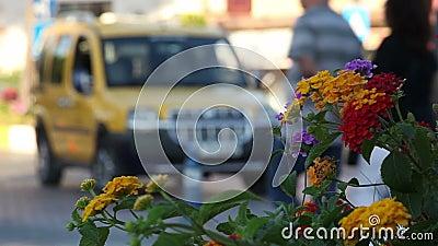 El taxi amarillo almacen de video
