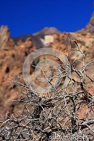 El Teide Volcano Drought