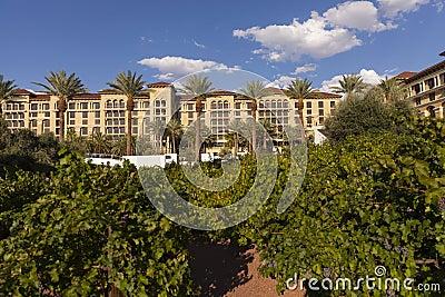 El viñedo en el centro turístico del rancho del valle verde y balneario en Las Vegas, Foto de archivo editorial