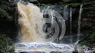 Elakala Falls. Blackwater Falls State Park, West Virginia stock video