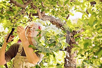 Elder woman gardening in her farm