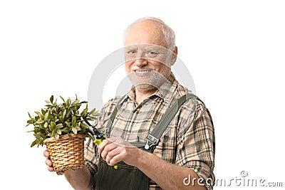 Elderly hobby gardener with clippers