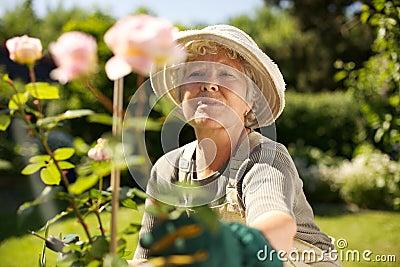 Elderly woman gardening in backyard