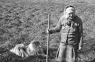 Elderly woman working the field
