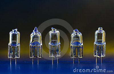 Electric halogen bulbs standing in a row 1