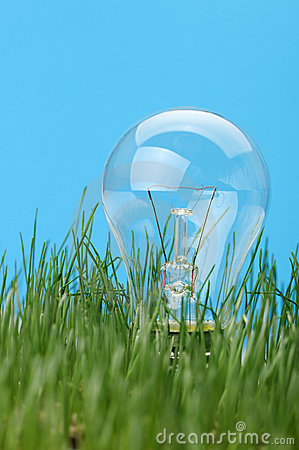 Electric lamp in a grass