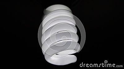 Electric Light Bulb On Black Free Public Domain Cc0 Image