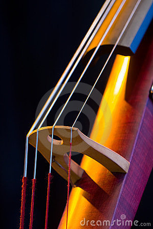 Electric Upright Bass Closeup