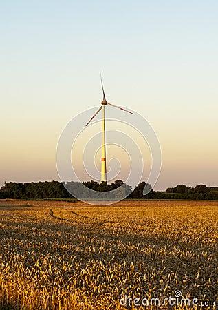 Electric wind turbines