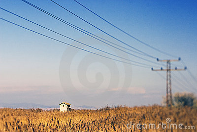 Electricity pylon wires