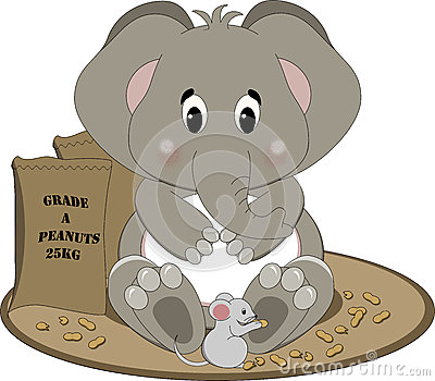 elefanten erdnüsse