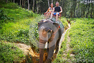 Elefant-Trekking in Thailand