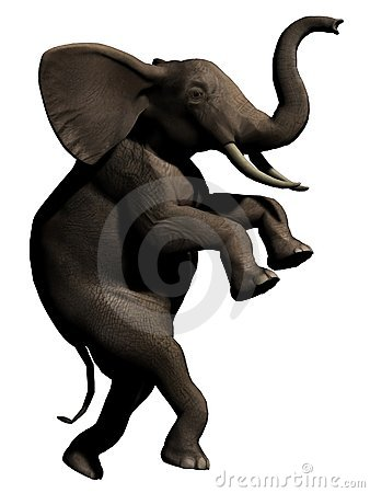 Elefante cauteloso