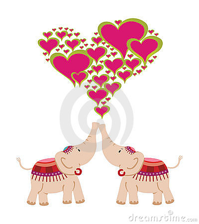 Elefanti che celebrano amore