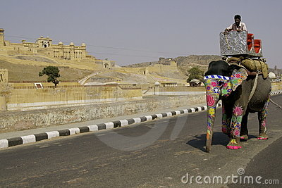 Elefantväg Redaktionell Foto