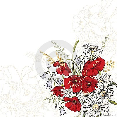 Elegance background with poppy flowers